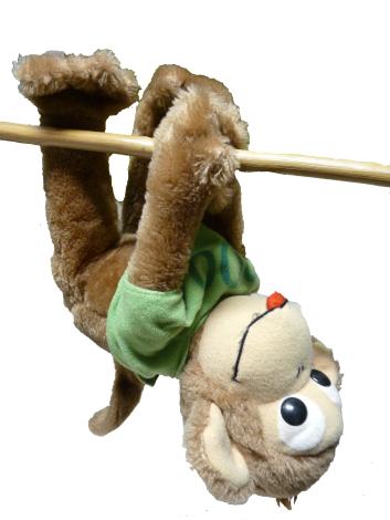 aapje uitgeknipt